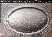 staro_art_of_poster